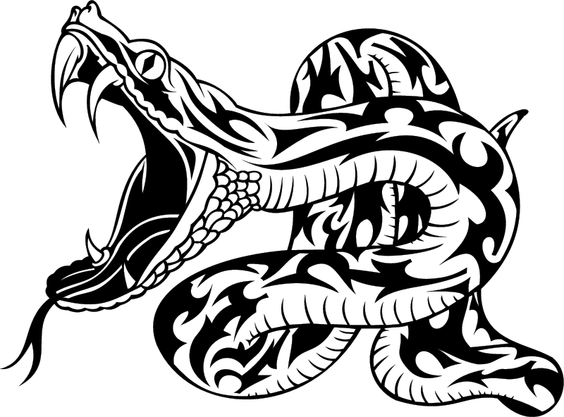 Snake Wity